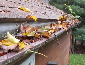 Central Ohio clogged gutters